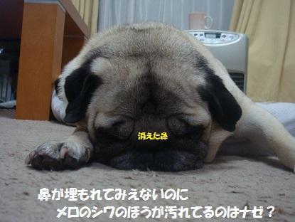 DSC08496_20140328042419f56.jpg