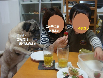 DSC08652_20140401032318eab.jpg