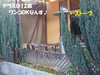 DSC08673_20140409002556448.jpg