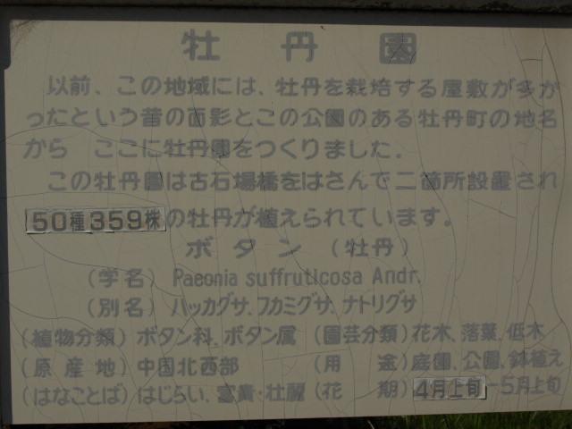 P140518e.jpg