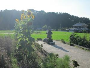 飛鳥寺 (54)