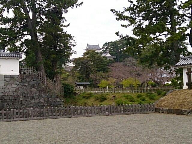 自転車の 小田原 自転車 : ... 月26日 三浦半島 (小田原城見学