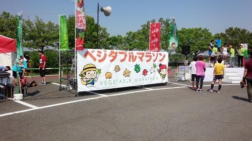 20140531_ベジタブルマラソン1