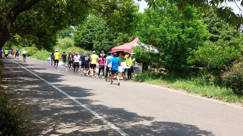 20140531_ベジタブルマラソン3