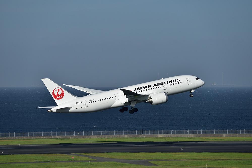 JAL B787チャーター