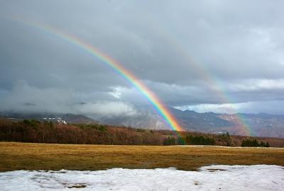 rainbow140330_05.jpg