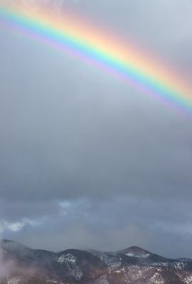 rainbow140330_11.jpg