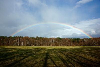 rainbow140404_02.jpg