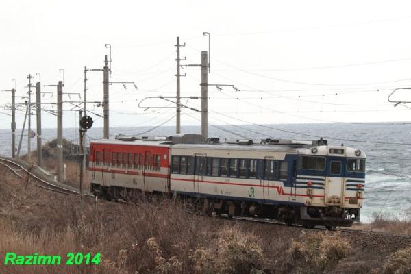 IMG_7292.jpg