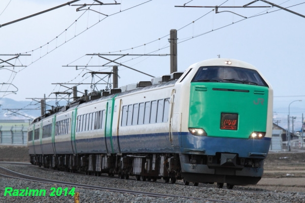 IMG_7313.jpg
