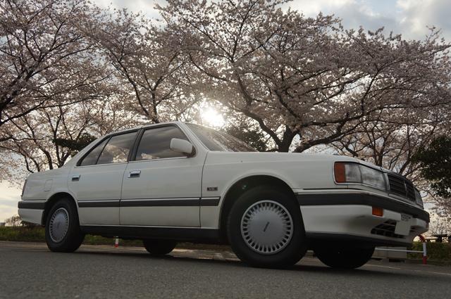 マツダ ルーチェ HCFC V6ルーチェと府中の桜