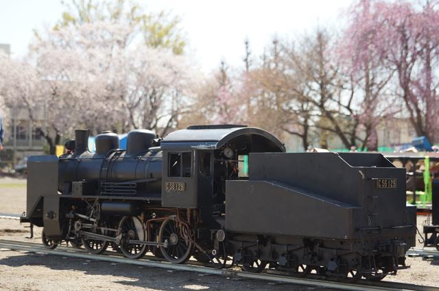 C56 129 桜をバックに