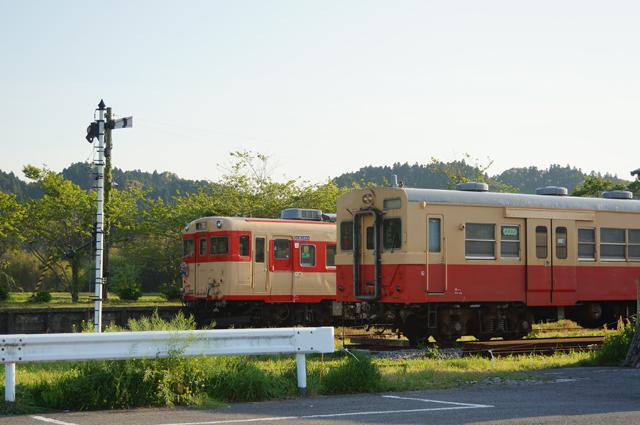 DSC07441va.jpg