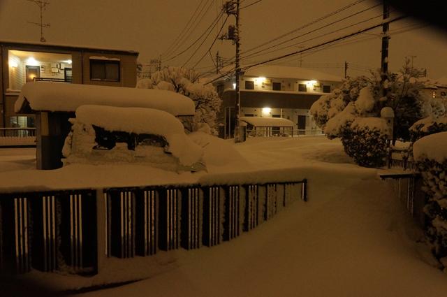 土曜午前4時半、雪が50cm近く積もっています