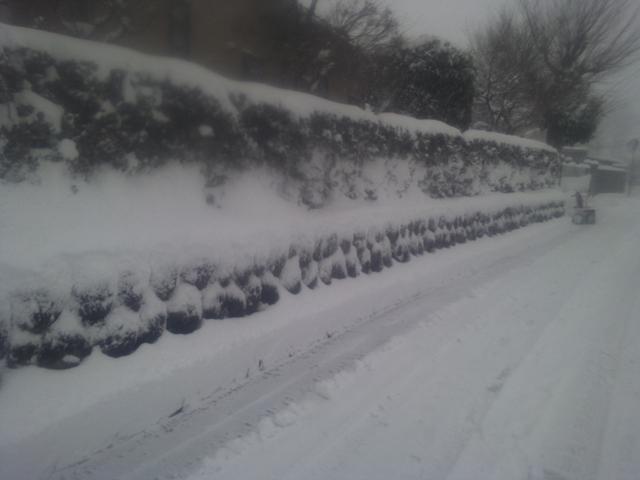 ロータリーで除雪後