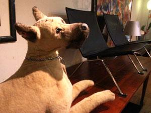 JOCKLINE/ジャックライン 犬 ぬいぐるみ 置物 オブジェ イタリア製
