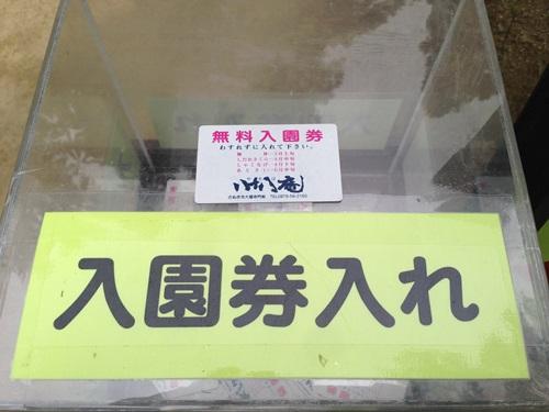 88ajisai04.jpg