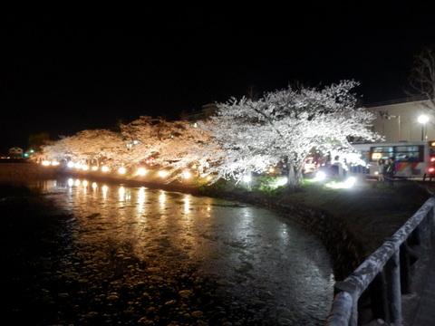 松本城 (102)