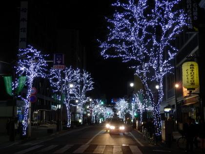 松本城 (104)