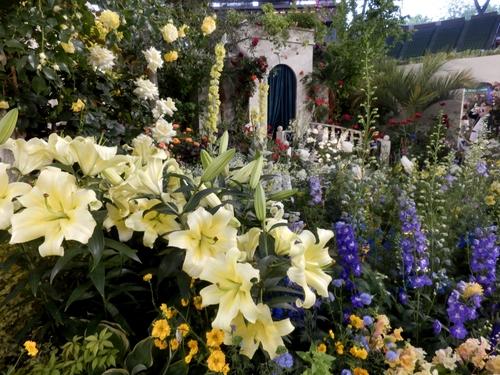 グレス・ケリーの庭(9)