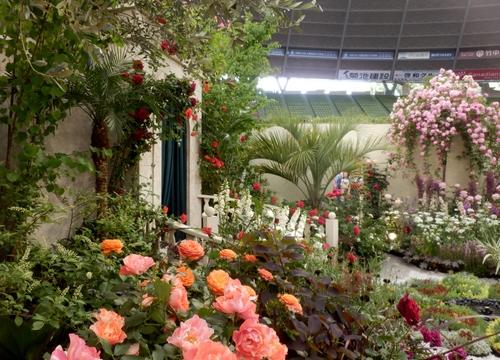 グレス・ケリーの庭(11)