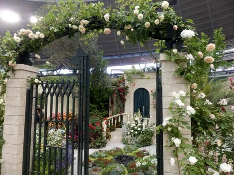 グレス・ケリーの庭(1)