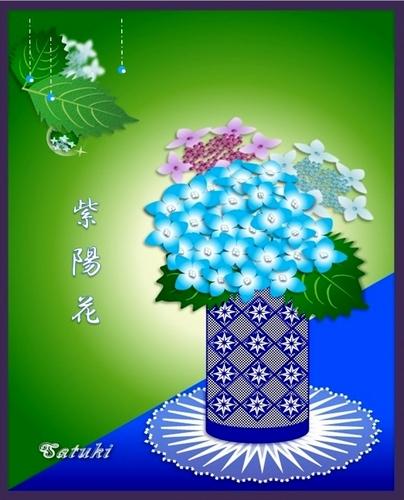 紫陽花(1)
