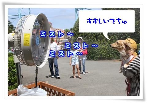 IMG_12811.jpg