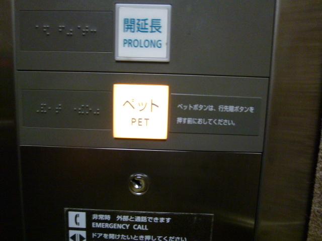 P1190491.jpg