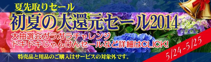 banner_earlysummer_20140522194952792.jpg