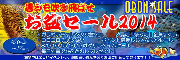 banner_obonsale-dc58e.jpg