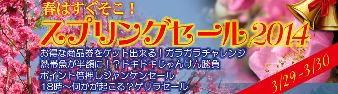 top_banner_20140328170242960.jpg