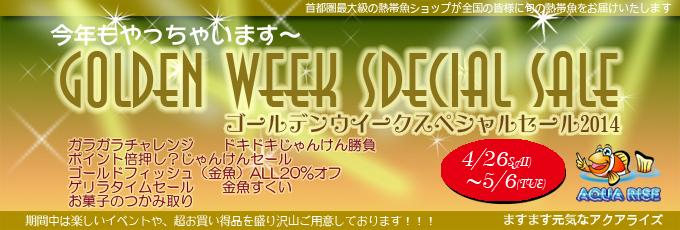 banner_20140429GW.jpg