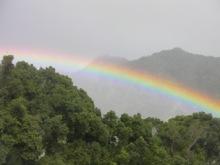 $自然のレッスン ~ 過去のレッスン、そして未来へのレッスン-2009カウアイ島にて