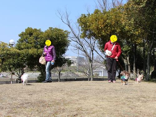 20140316-5.jpg