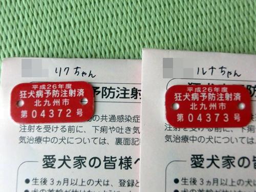 20140403-4.jpg