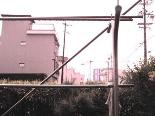 IMG_8968s