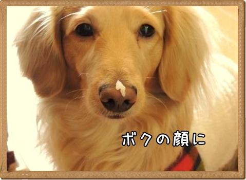 鼻に米粒2