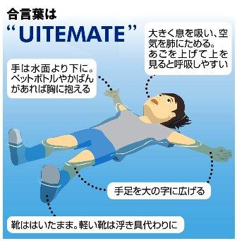 FCサイズ UITEMATE - コピー