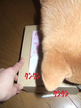blog6737.jpg