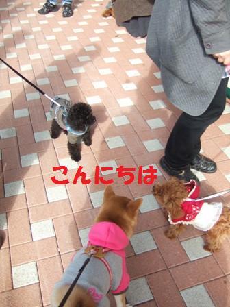 blog6752.jpg