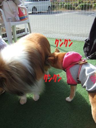 blog6753.jpg