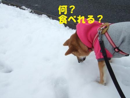blog6776.jpg