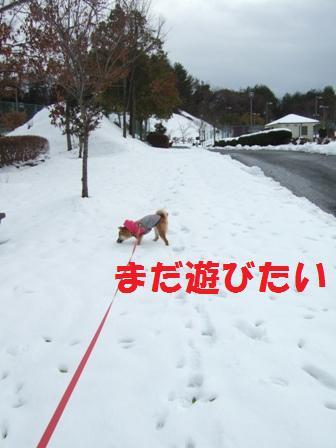 blog6792.jpg