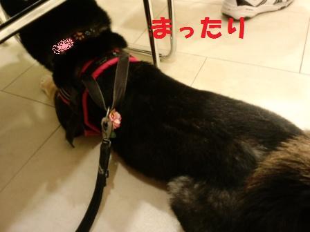 blog6795.jpg