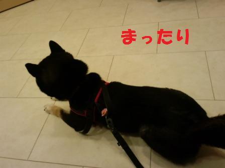 blog6796.jpg