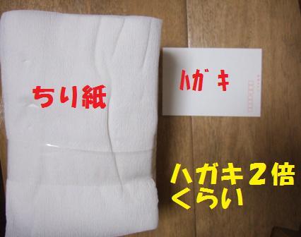 blog6801.jpg
