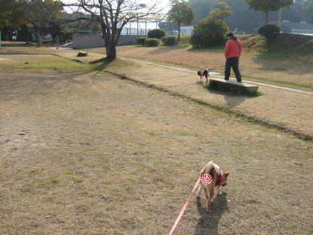 blog6804.jpg