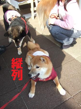 blog6812.jpg