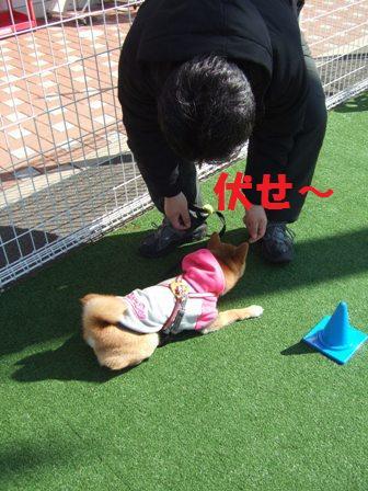 blog6876.jpg